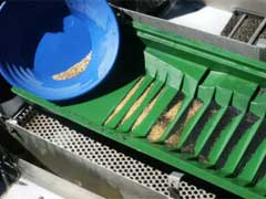 Gold Prospecting Equipment - What Tools Are Required?